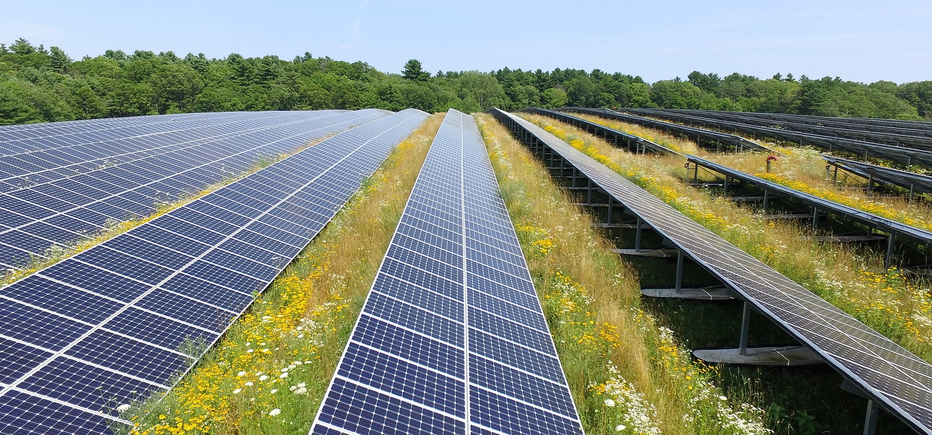 Massachusetts solar farm